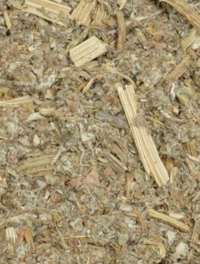 Alcachofra - Folhas
