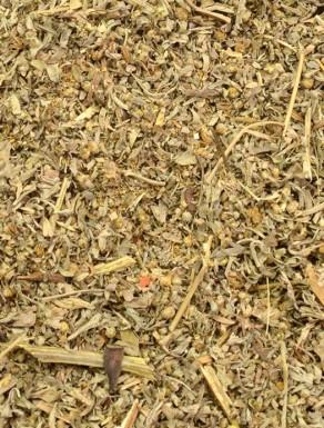 Absinto - Losna - Artemisia - Planta
