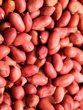 Amendoim Crú Com Pele - Miolo