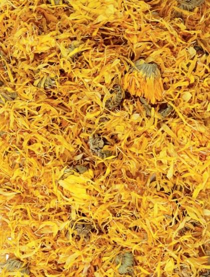 Calêndula Officinalis - Flor