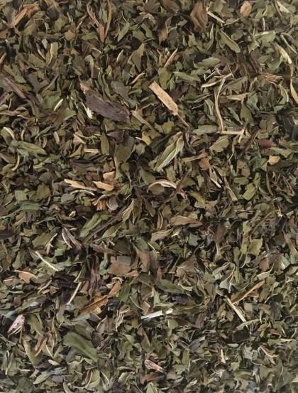 Hortelã Pimenta - Planta