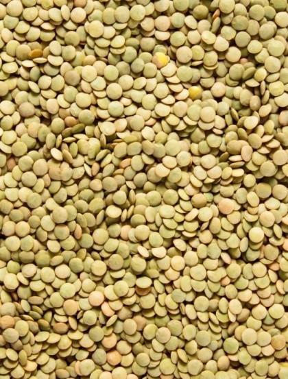Lentilha Verde Seca - Bagas