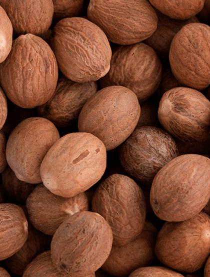 Noz Moscada - Fruto
