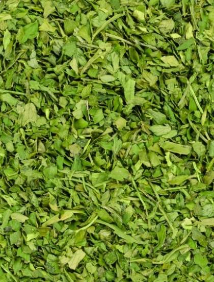 Cebolinho - Folhas
