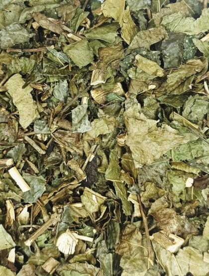 Chá de Bugre - Folhas